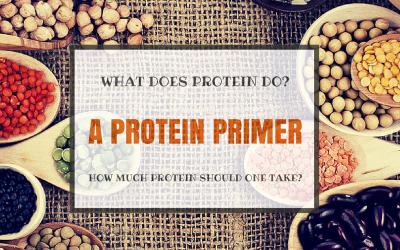 A Protein Primer